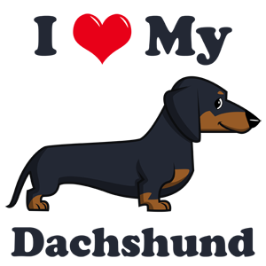 I Love My Dachshund (Cartoon)